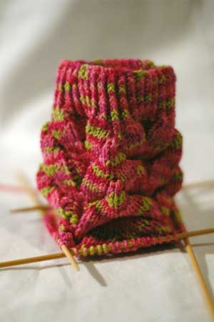 Monkey Socks Knitty Winter 2007 Cookie A